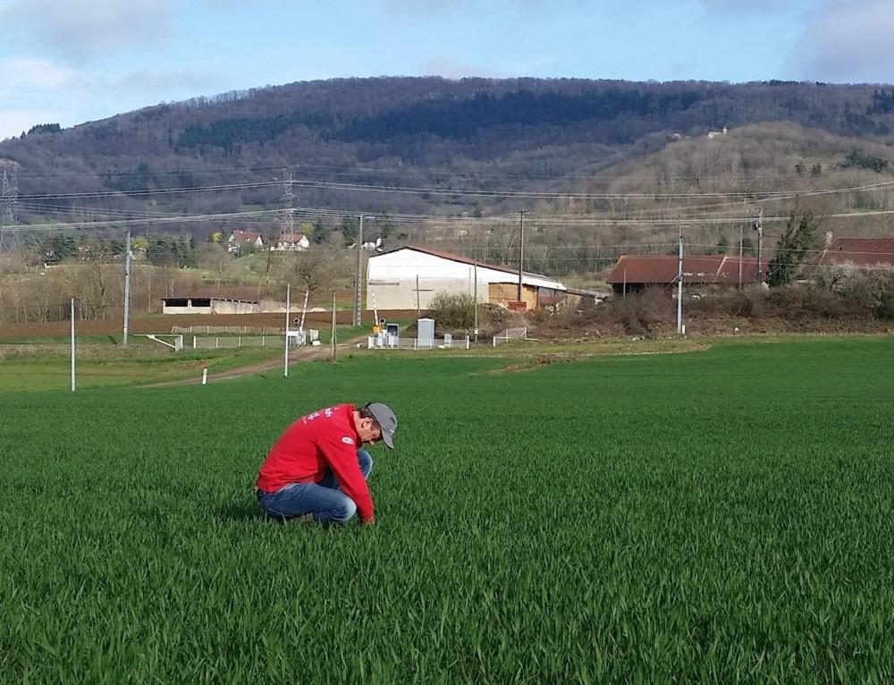 L'EARL Rodot s'engage dans la réduction des herbicides !