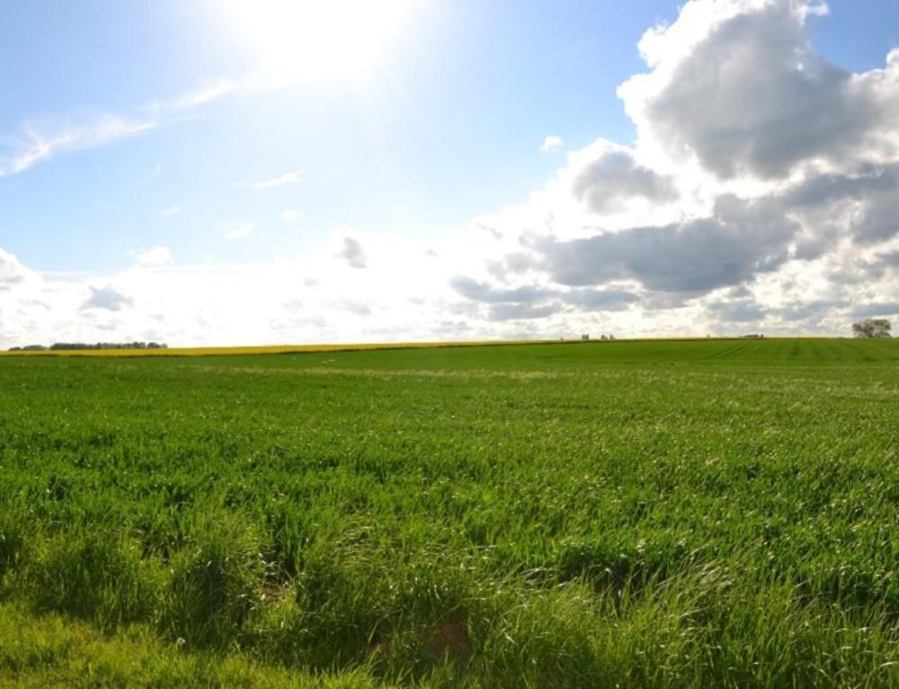 L'agriculture de précision au service de l'environnement