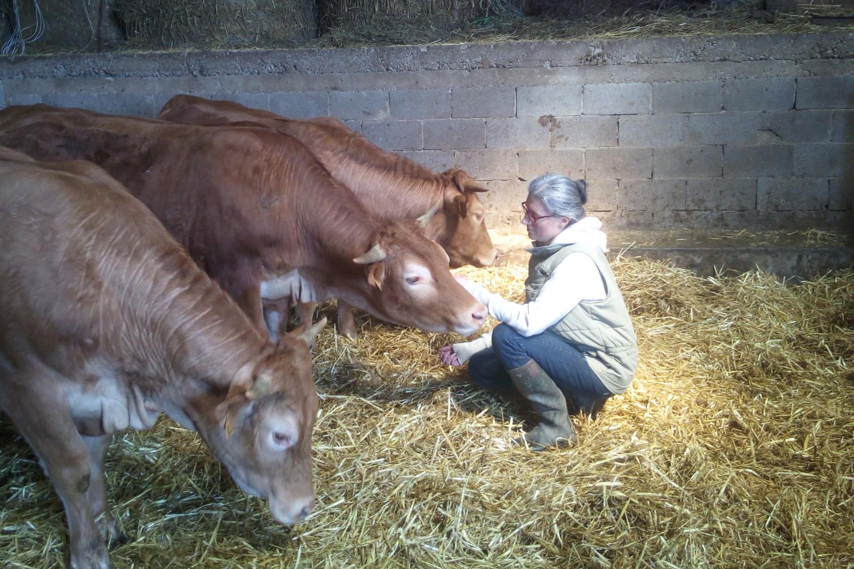Mélanie Hoff caresse une vache