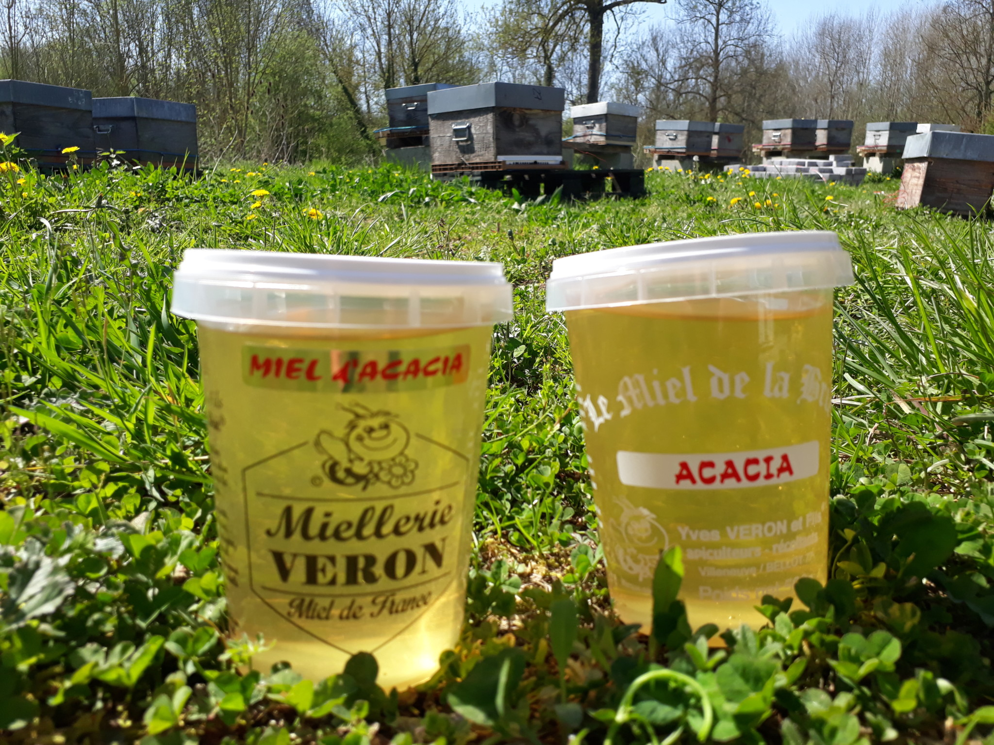 Pots de miel - produits EARL Véron
